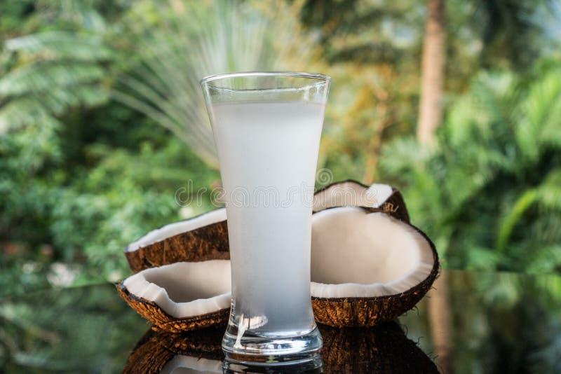 Os cocos e o coco molham na tabela de vidro preta isolada sobre o fundo borrado das palmeiras imagem de stock royalty free