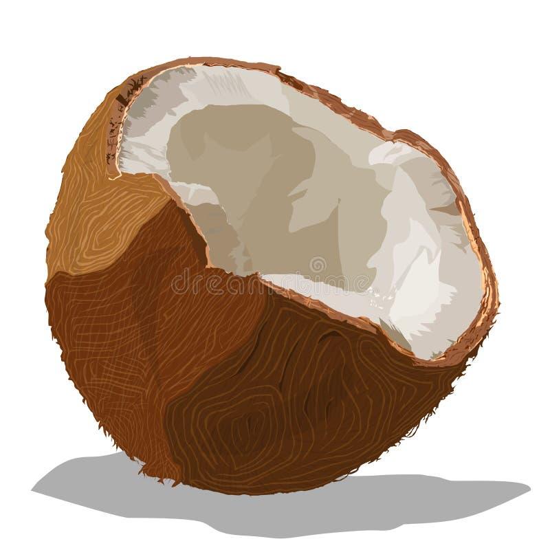 Os cocos quebrados a imagem do vetor ilustração do vetor