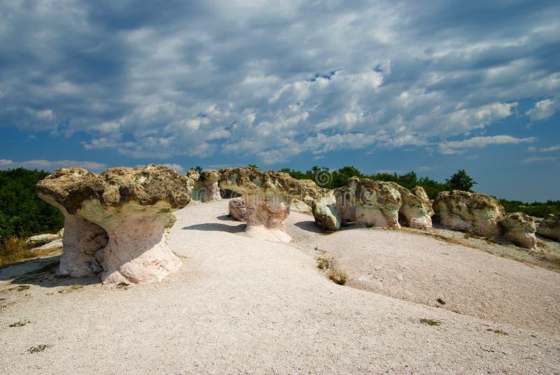 Os cogumelos da pedra foto de stock