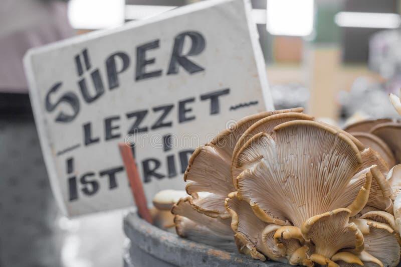 Os cogumelos de ostra frescos com a ostra super obscura do gosto etiquetam atrás no contador em um bazar típico do greengrocery e foto de stock