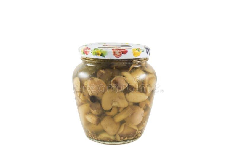 Os cogumelos minúsculos enlatados no frasco de vidro isolaram-se imagem de stock