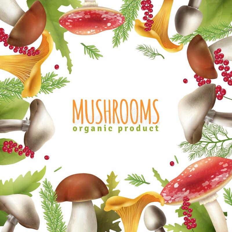 Os cogumelos moldam o cartaz realístico do fundo ilustração stock