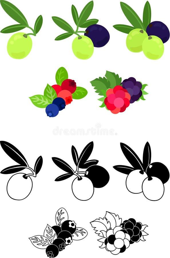 Os ?cones bonitos dos frutos ilustração do vetor