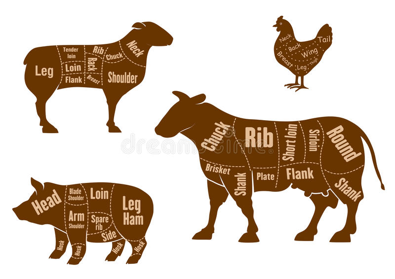 Os cortes da carne da galinha, da carne de porco, da carne e do cordeiro planejam ilustração royalty free