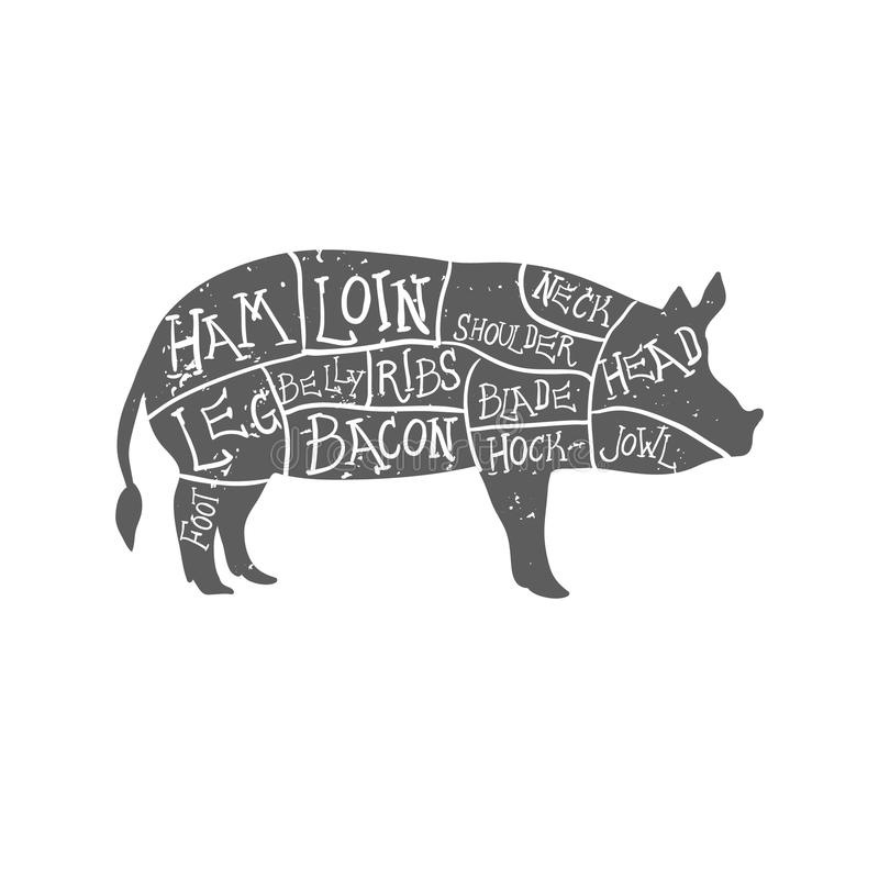 Os cortes de carne de porco americanos, carniceiro desenhado à mão tipográfico do vintage cortam o esquema grunge na camada separ ilustração royalty free