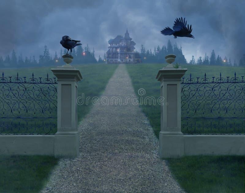 Os corvos fotografia de stock