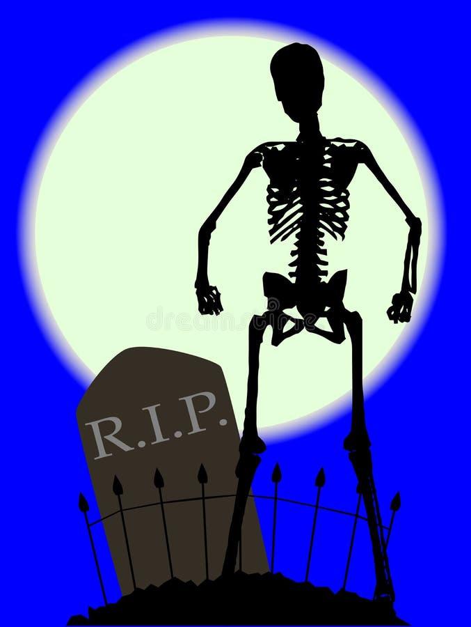 Os de cimetière illustration libre de droits