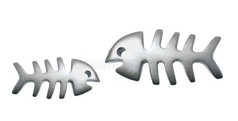 Os de poissons image stock