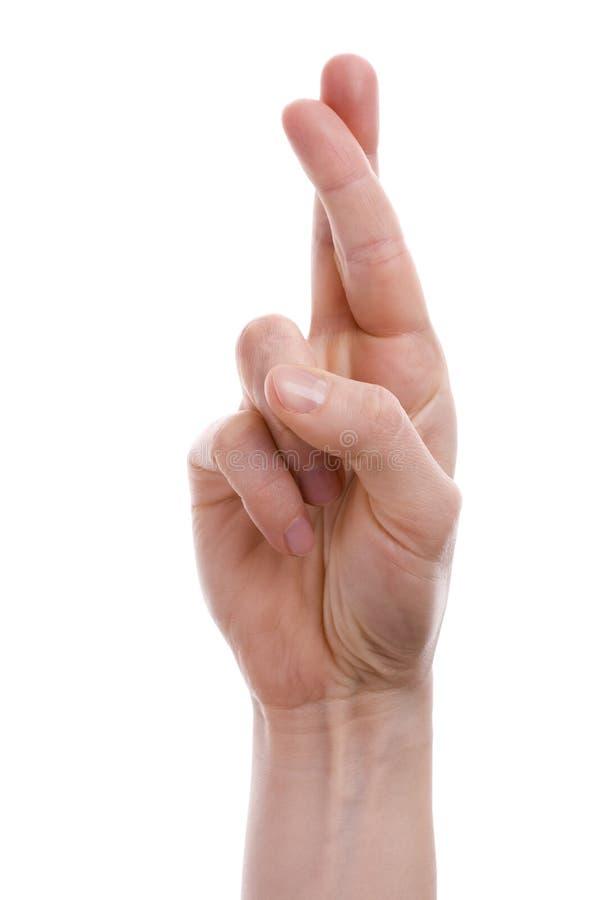 Os dedos cruzaram-se fotografia de stock royalty free
