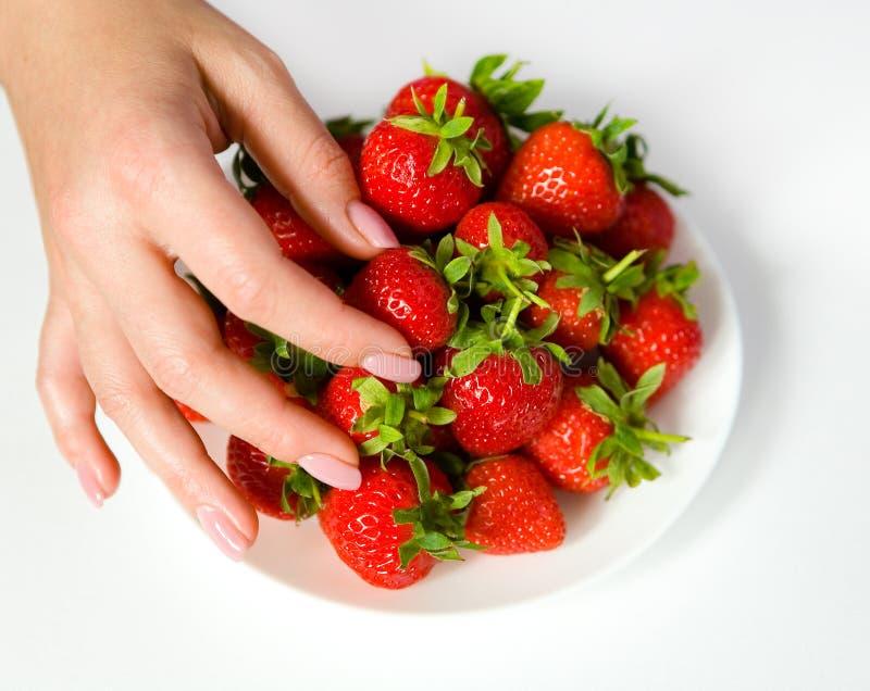 Os dedos fêmeas com um tratamento de mãos tomam uma baga da morango do fotografia de stock royalty free