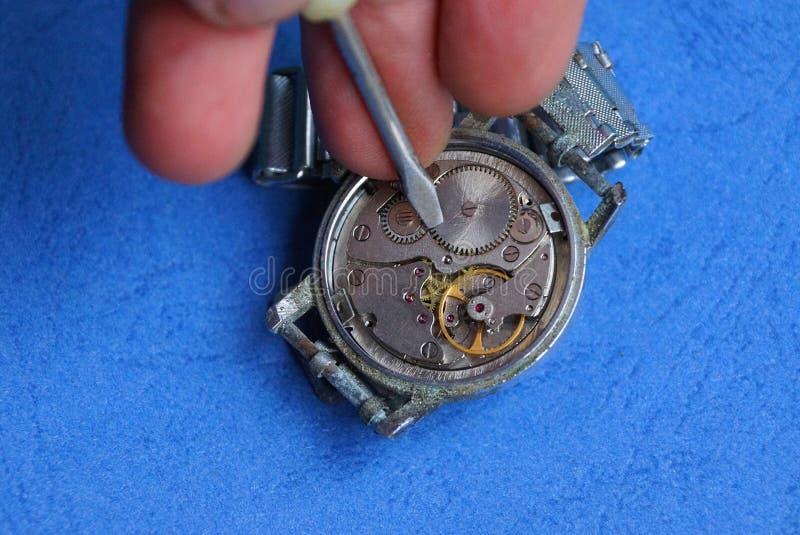 Os dedos guardam uma chave de fenda sobre o mecanismo aberto do relógio fotografia de stock