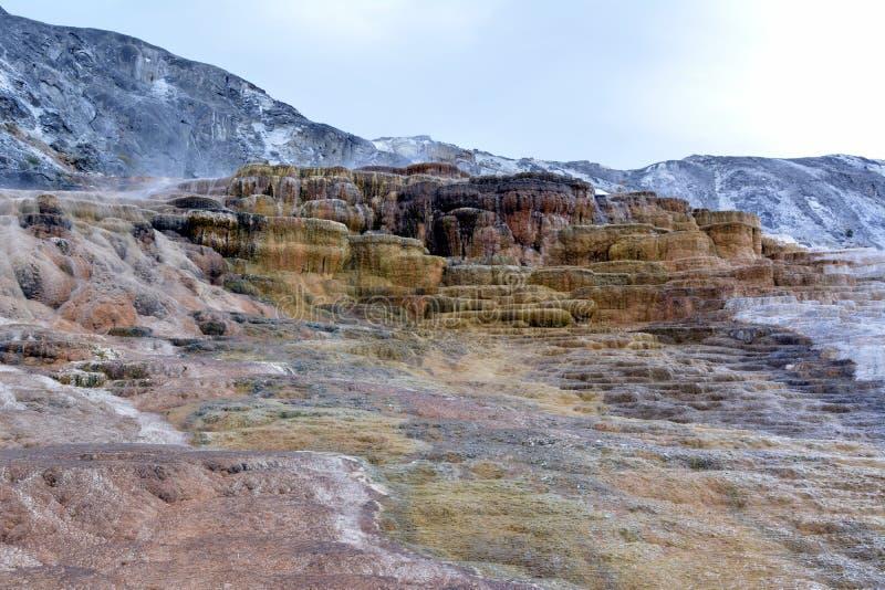 Os depósitos coloridos da pedra calcária em Mammoth Hot Springs em Yellowstone estacionam fotografia de stock royalty free