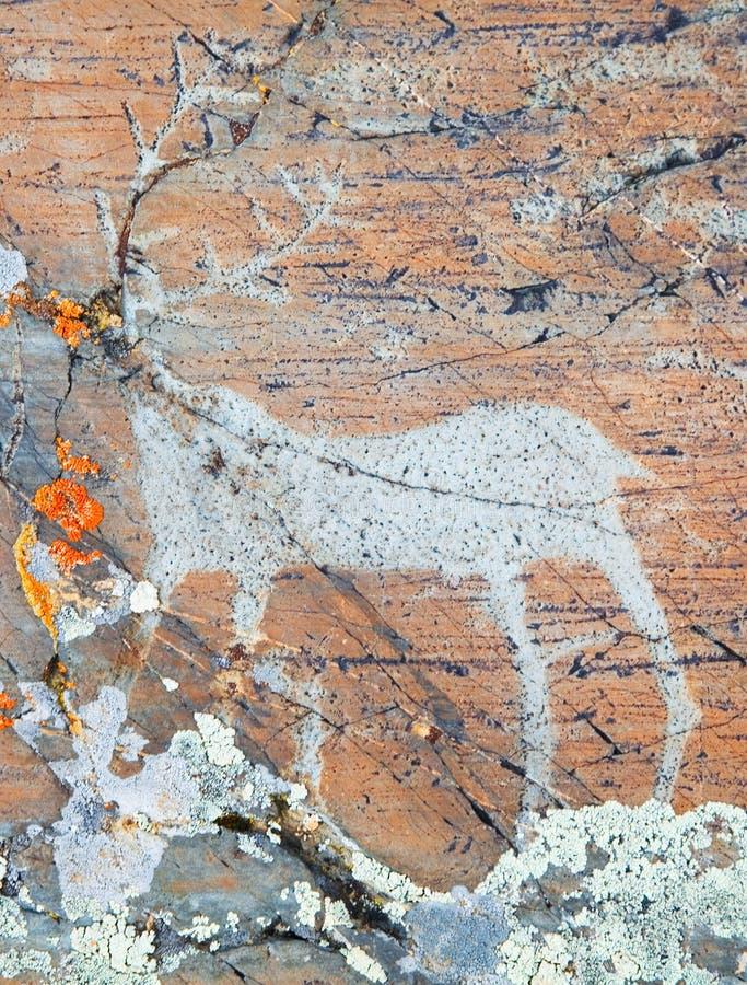 Os desenhos antigos em rochas Altai imagem de stock