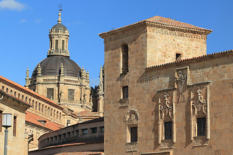 Salamanca histórico foto de stock royalty free