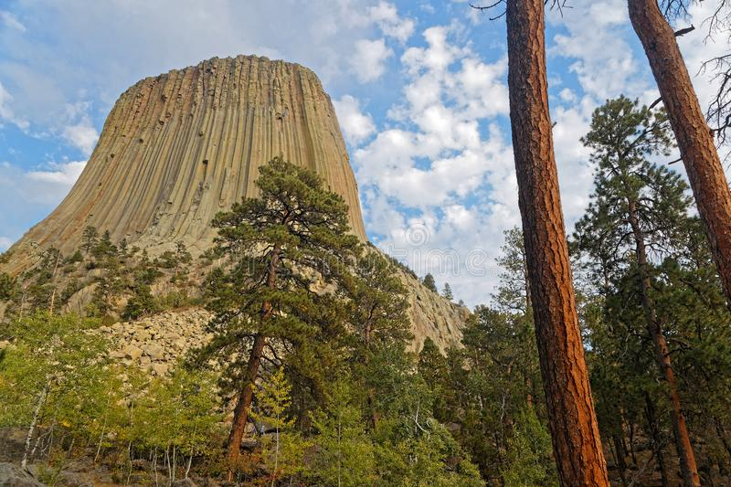 Os diabos elevam-se cimeira vista completamente as árvores fotos de stock royalty free
