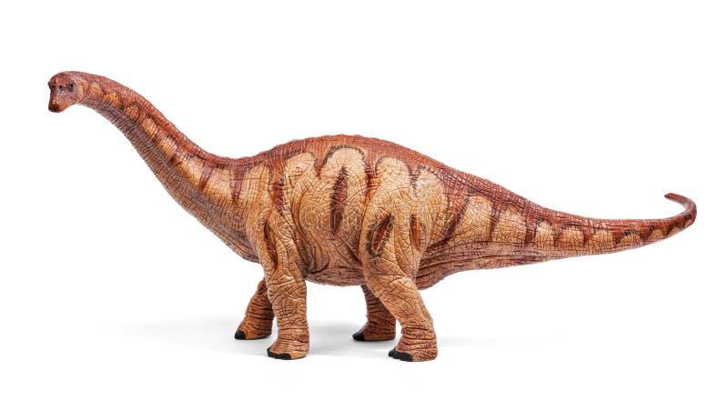 Os dinossauros do Apatosaurus brincam isolado no fundo branco com trajeto de grampeamento imagens de stock royalty free