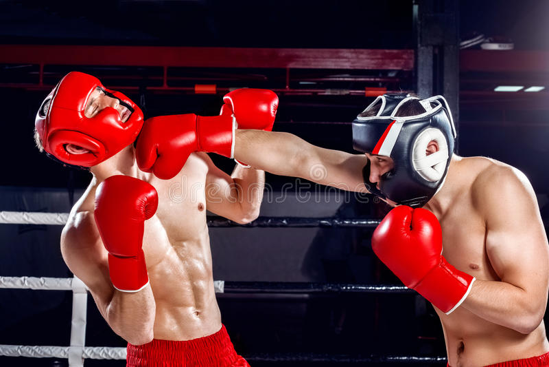 Os dois pugilistas experientes estão lutando um com o otro foto de stock royalty free