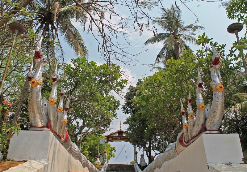 Os dragões guardam as escadas ao templo fotografia de stock royalty free