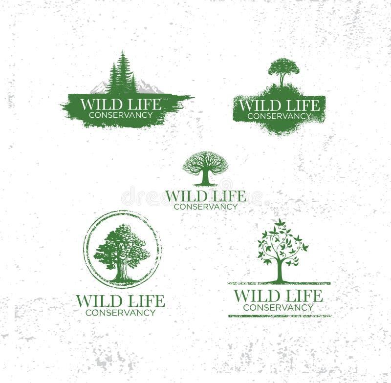 Os emblemas da aventura com curso diferente projetam raios retros do sol das silhuetas das árvores das montanhas da terra dos ele ilustração do vetor