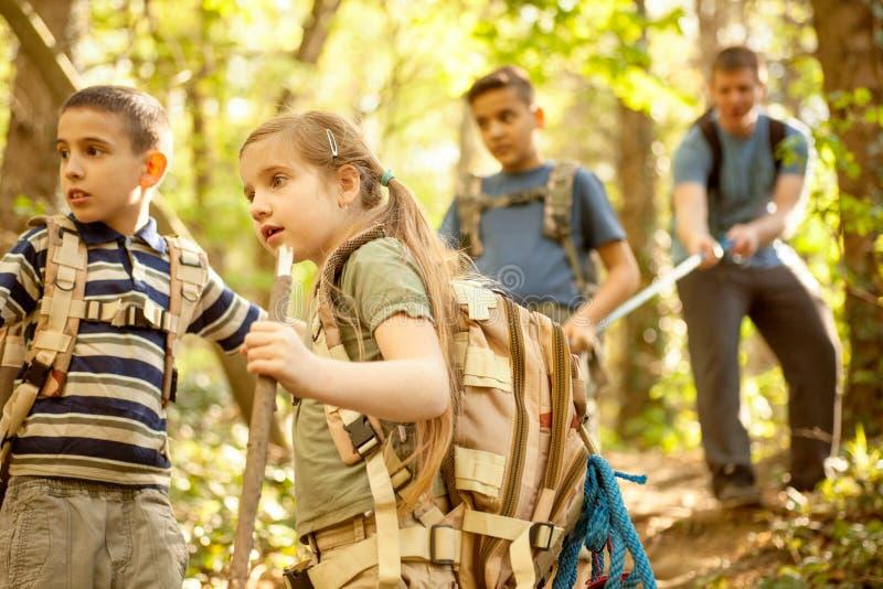 Os escuteiros e o pai das crianças exploram a floresta bonita fotografia de stock
