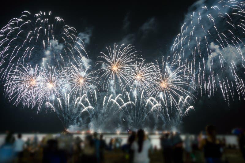 Os espectadores estão olhando fogos de artifício coloridos no céu noturno na praia fotos de stock