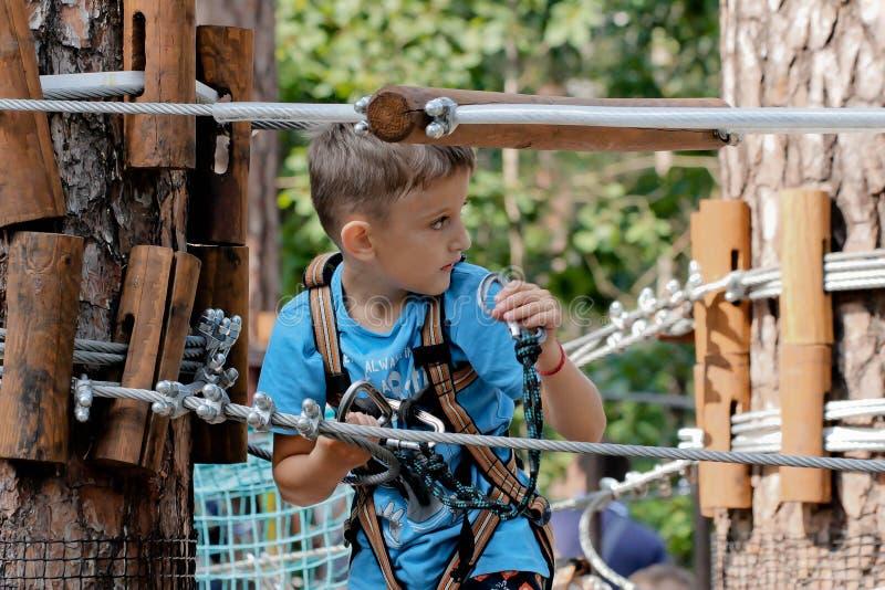 Os esportes caçoam no menino da floresta que joga o movimento extremo na alta altitude fotos de stock royalty free