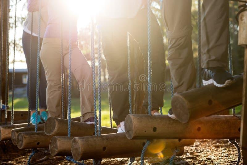 Os executivos que cruzam o balanço entram a floresta fotografia de stock