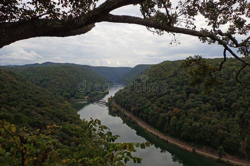 Os falcões aninham o parque estadual, West Virginia foto de stock royalty free