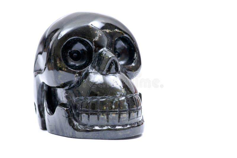 Os falcões eye o crânio realístico cinzelado isolado no branco fotos de stock royalty free
