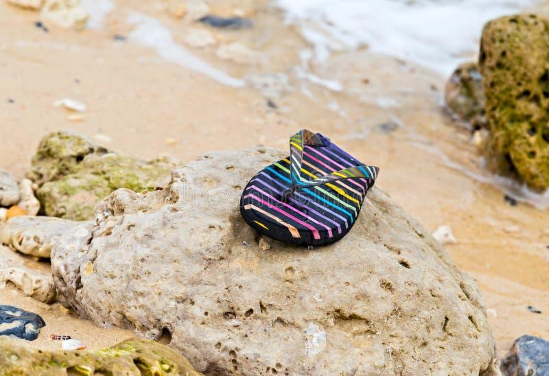 os falhanços de aleta perderam o desastre arenoso do tsunami do beachafter fotografia de stock royalty free