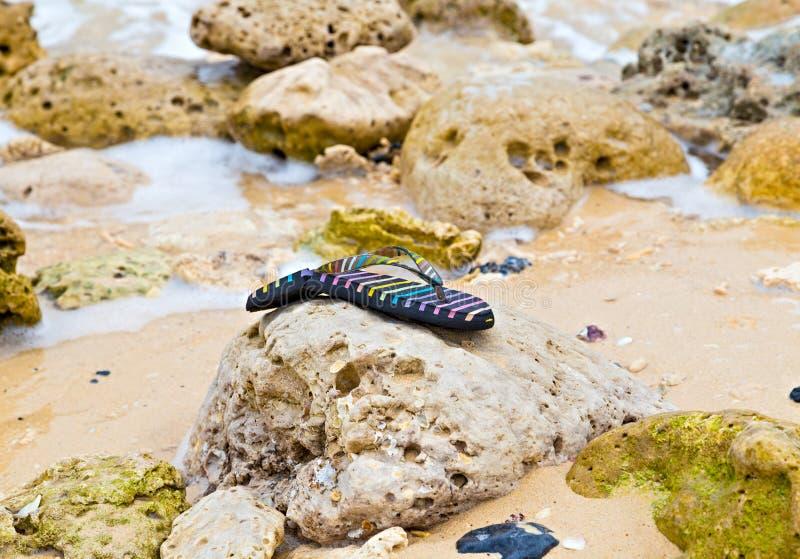 os falhanços de aleta perderam o Sandy Beach após o desastre do tsunami foto de stock royalty free