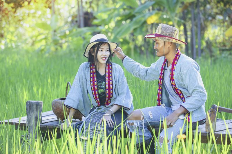 Os fazendeiros asiáticos tomam da qualidade do arroz no campo assim como colha o produto imagem de stock