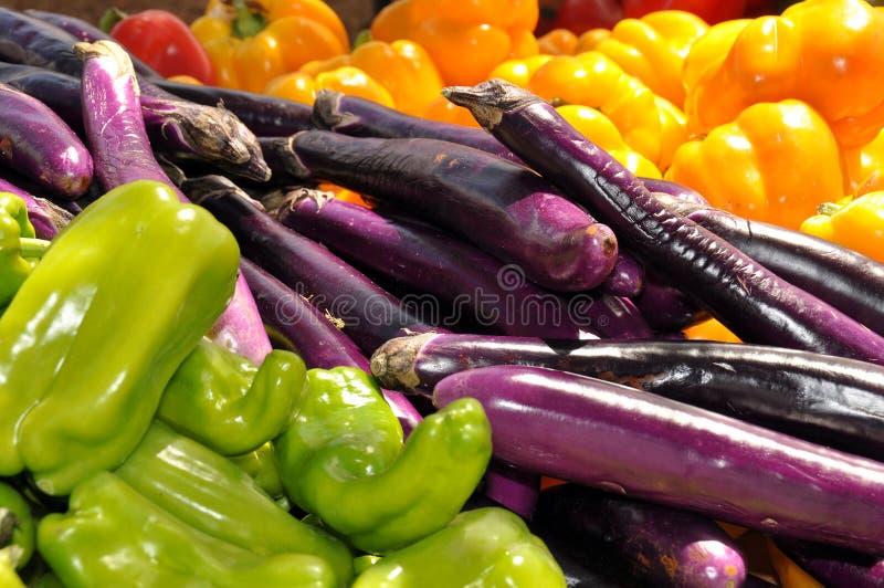 Os fazendeiros introduzem no mercado Veggies coloridos foto de stock