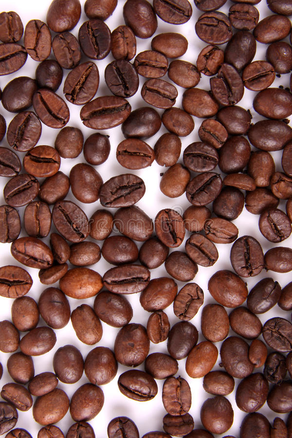Os feijões de café fecham-se acima do fundo no branco imagens de stock