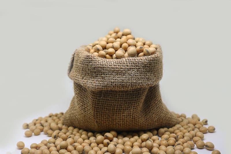 Os feijões de soja no saco do cânhamo ensacam no fundo branco imagem de stock