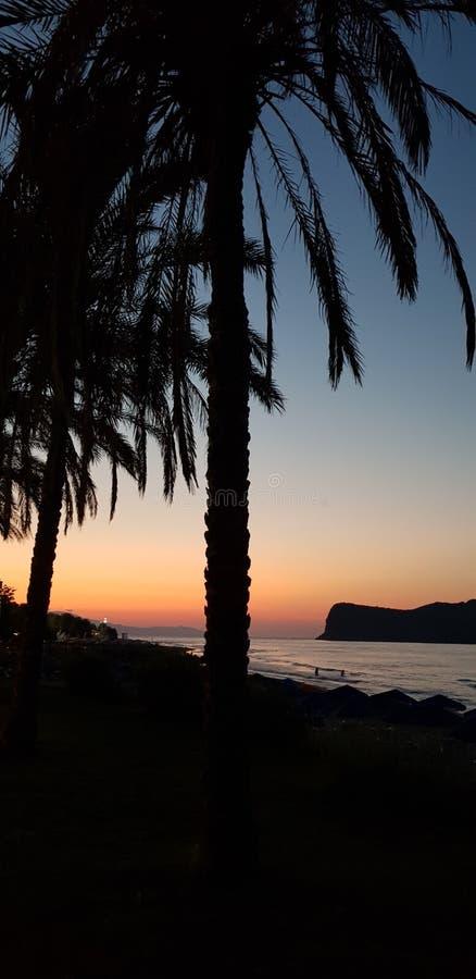 Os feriados gostam destes, areia, praia, dreamchasers, humor, paisagem poderosa, amor na primeira vista, palmtrees, sunsetvision imagens de stock