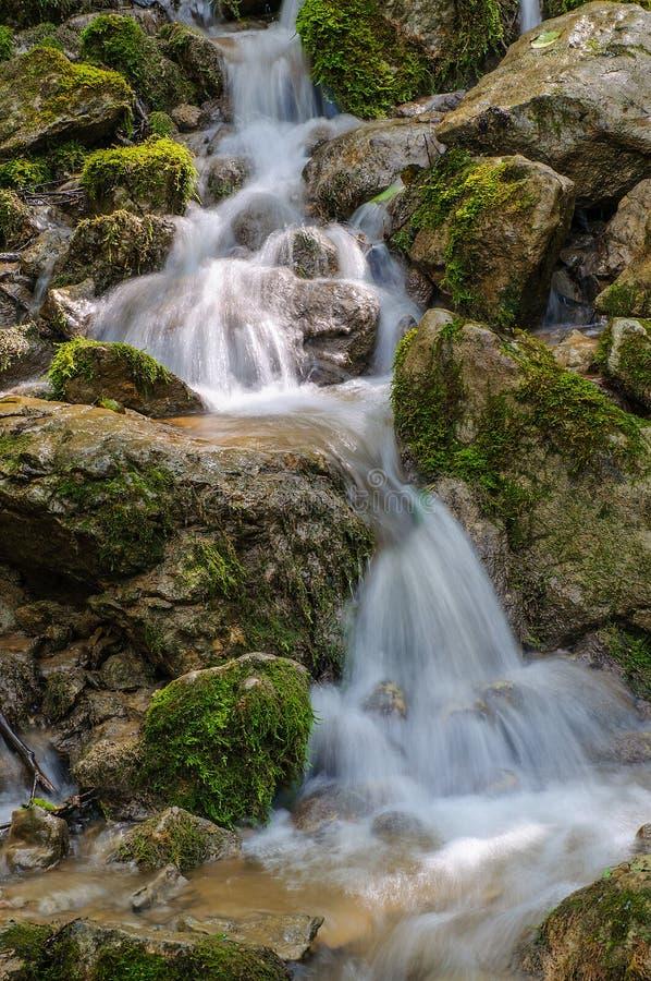 Os fluxos de córrego da montanha jogam as pedras com um fluxo bonito imagem de stock