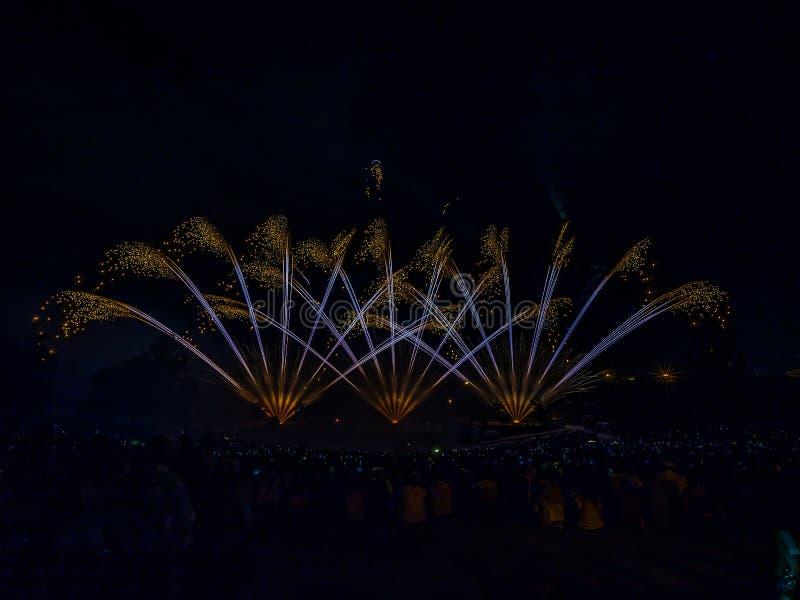 Os fogos de artifício com a silhueta da audiência imagens de stock royalty free
