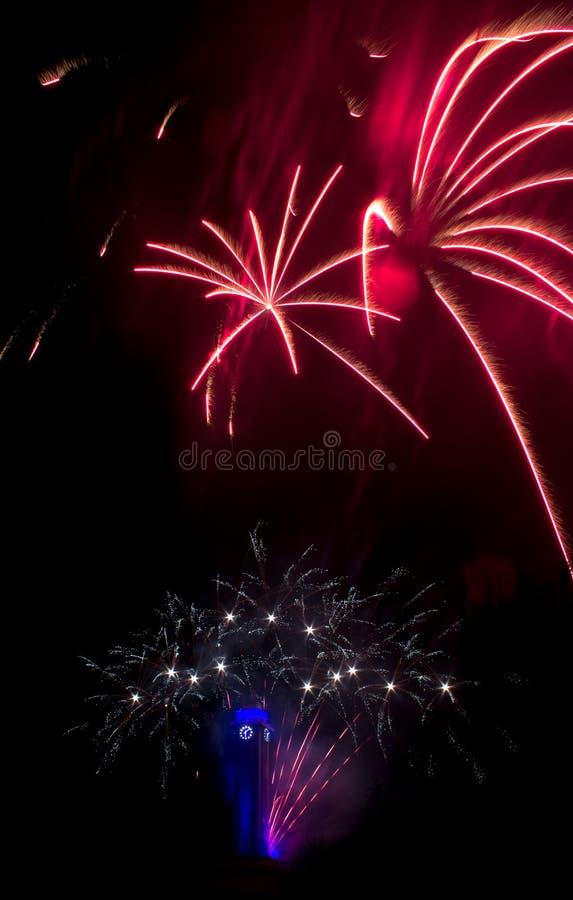 Os fogos-de-artifício vermelhos gostam de flores com pulso de disparo da câmara municipal fotos de stock royalty free