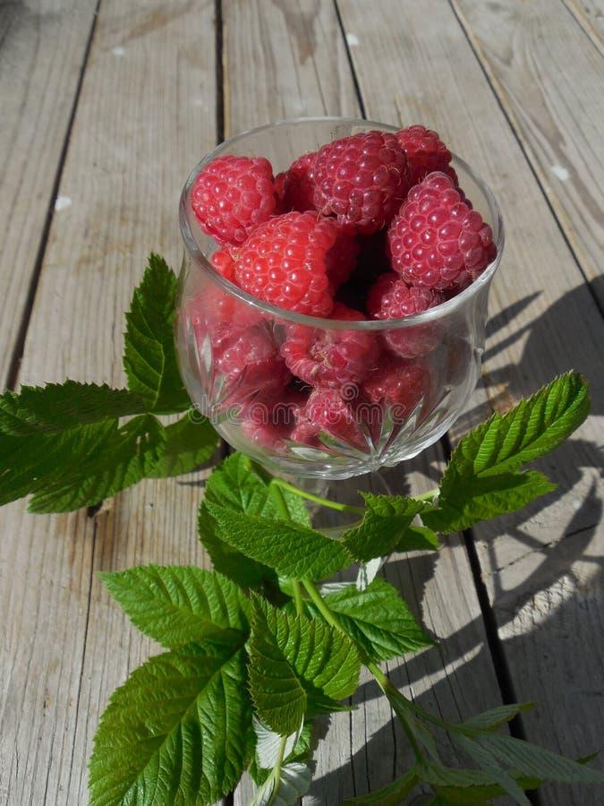 Os frutos das framboesas em um vidro fotografia de stock royalty free