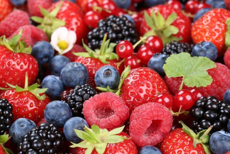 Os frutos de baga misturam com as morangos, os mirtilos e as cerejas imagem de stock
