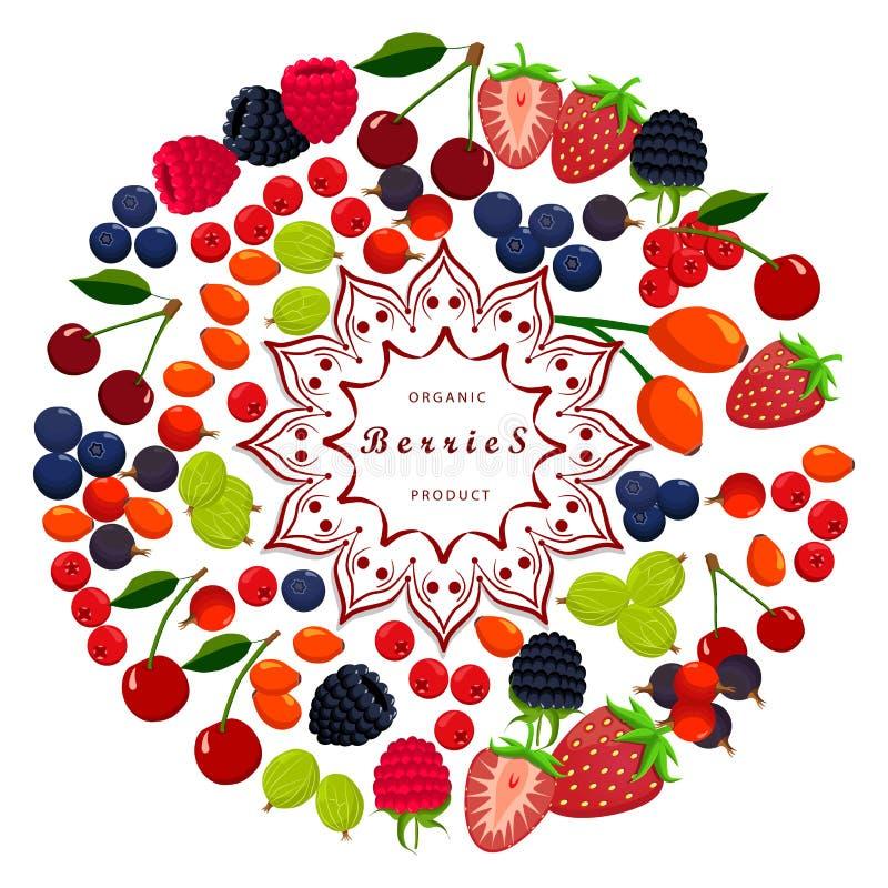 Os frutos maduros ilustração do vetor