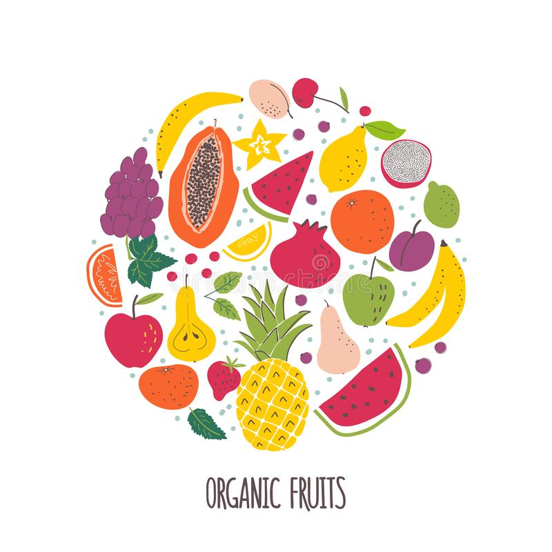 Os frutos orgânicos entregam a ilustração de cor tirada ilustração royalty free
