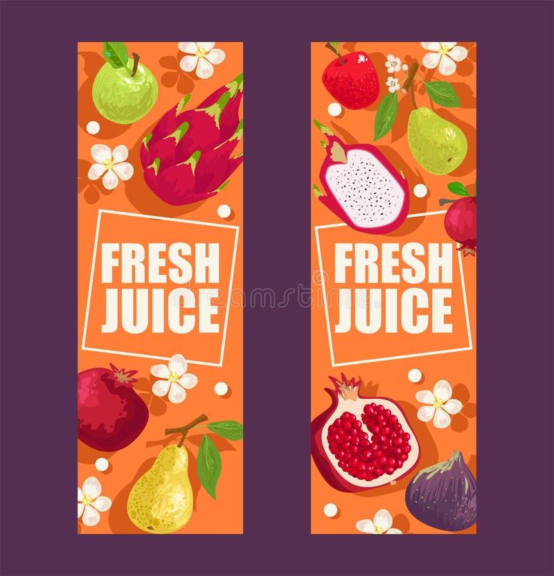 Os frutos tropicais ajustaram-se da ilustra??o do vetor das bandeiras Produtos exóticos do verão tais como o mangustão, maçã, dra ilustração royalty free