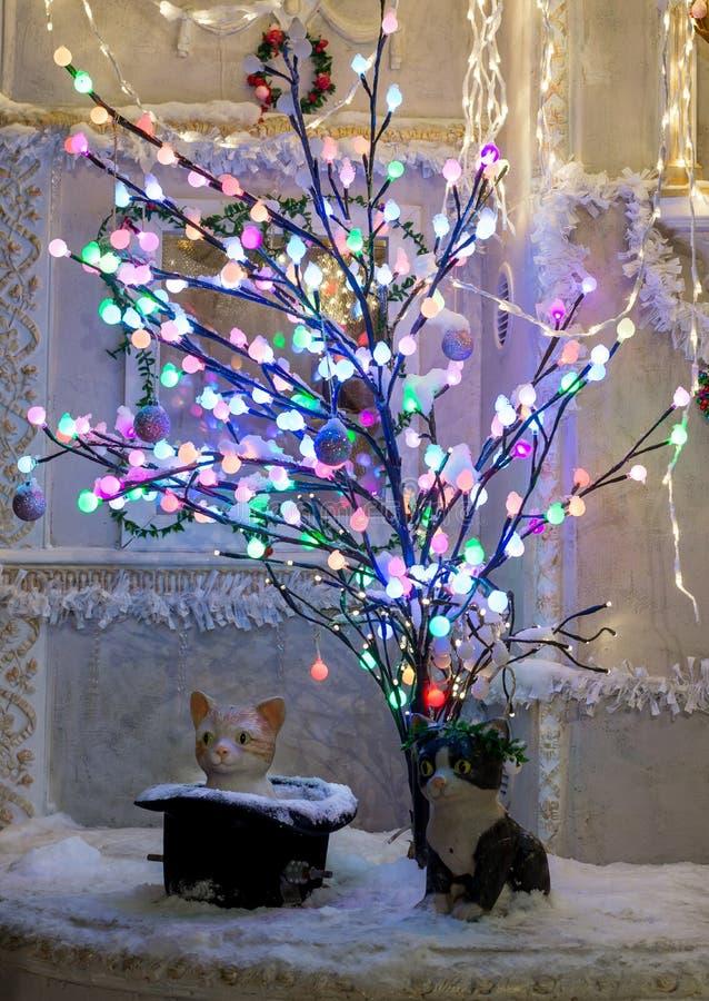 Os gatos pequenos estão sentando-se sob a árvore de Natal das luzes imagem de stock royalty free