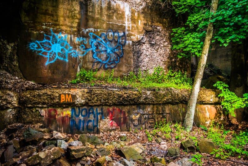 Os grafittis sob uma ponte da estrada de ferro em Lehigh Gorge o parque estadual, pena foto de stock