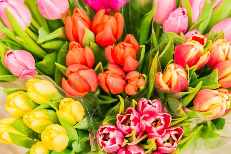 Os grupos da mola colorida das tulipas florescem, vista superior imagens de stock royalty free