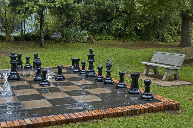 Os grupos de xadrez do jardim com água deixam cair após a noite chuvosa em Sabie foto de stock