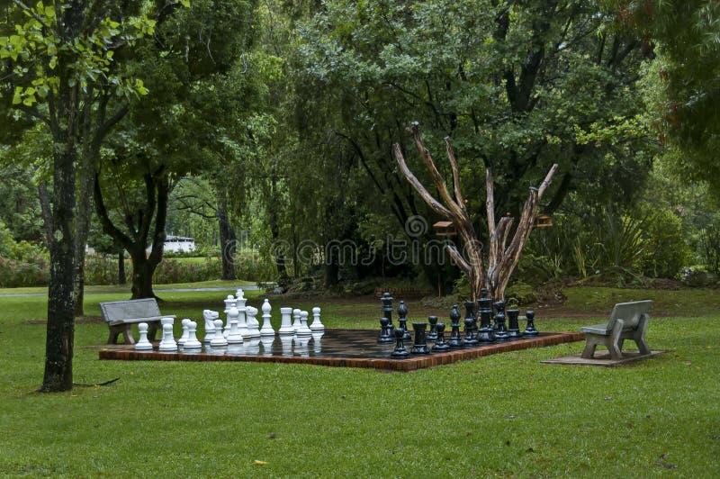 Os grupos de xadrez do jardim com água deixam cair após a noite chuvosa em Sabie fotos de stock
