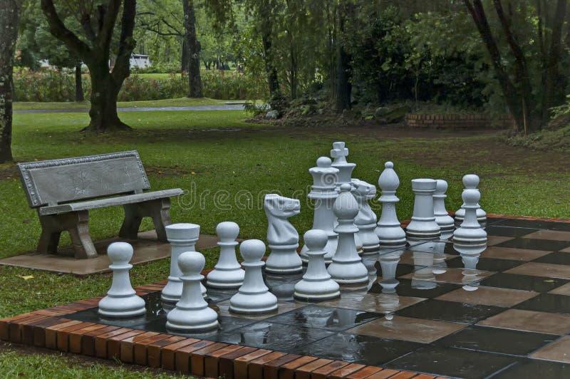 Os grupos de xadrez do jardim com água deixam cair após a noite chuvosa em Sabie imagens de stock royalty free